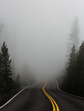 Fog. Photo by Katie Moum on Unsplash